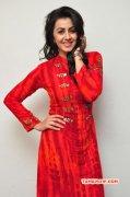 Tamil Movie Actress Nikki Galrani Photo 4241