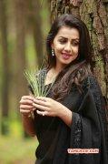 Wallpaper Nikki Galrani Tamil Actress 9090