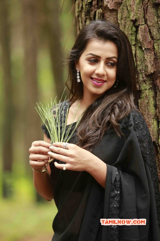 Wallpaper Nikki Galrani Tamil Actress 9090