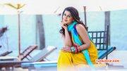 Wallpapers Nikki Galrani Tamil Movie Actress 8751