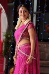 Actress Nisha Agarwal 4604