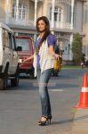 Nisha Agarwal Stills 2380