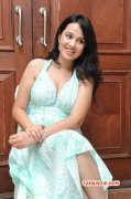 Images Actress Nisha Kothari 68