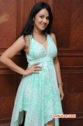 Indian Actress Nisha Kothari Oct 2014 Stills 512