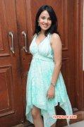 Indian Actress Nisha Kothari Recent Photo 8202
