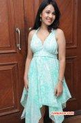 New Picture Tamil Heroine Nisha Kothari 6024