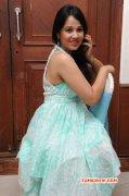 Nisha Kothari Film Actress Recent Pics 5789
