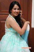 Nisha Kothari Film Actress Recent Still 5918