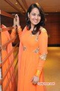 Picture Movie Actress Nisha Kothari 4541