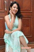 Recent Photos Nisha Kothari Heroine 3147