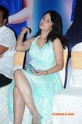 Recent Pic Nisha Kothari Tamil Heroine 5256
