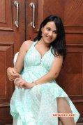 South Actress Nisha Kothari Recent Album 4071