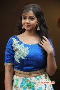 Recent Picture Nithya Shetty Movie Actress 5264