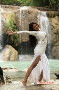 2014 Photos Oviya Tamil Heroine 5476