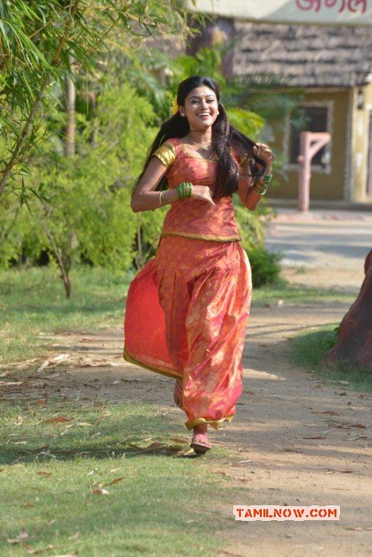 2016 Photo Cinema Actress Oviya 5963
