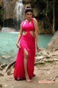 Film Actress Oviya Oct 2014 Stills 3660