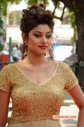 Gallery Oviya Tamil Actress 9729