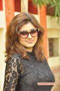 Latest Galleries Tamil Movie Actress Oviya 1365