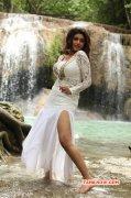Oviya Movie Actress Latest Images 3945