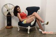 Oviya Tamil Heroine Photos 585