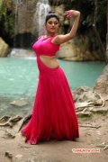 Pictures Oviya Indian Actress 9577