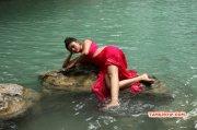 Recent Pic Oviya South Actress 7556