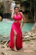 Recent Pics Oviya Tamil Heroine 5926