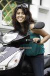 Tamil Actress Oviya 2247