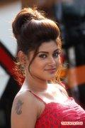Tamil Actress Oviya Photos 8794