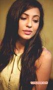 Indian Actress Parvathy Nair Dec 2014 Wallpaper 2447