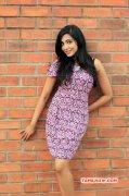 Parvathy Nair Film Actress Wallpaper 6520