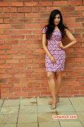Pic Actress Parvathy Nair 2384