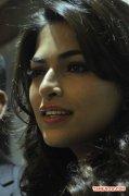Tamil Actress Parvathy Omanakuttan Photos 8730