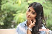 2014 Galleries Pooja Hegde South Actress 5043