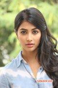 Cinema Actress Pooja Hegde Image 5775