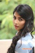 Cinema Actress Pooja Hegde Images 9963