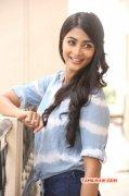Galleries Movie Actress Pooja Hegde 4540