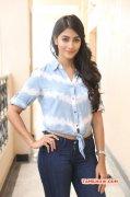New Galleries Pooja Hegde Tamil Heroine 9334