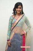 Pooja Hegde Cinema Actress Latest Photo 6005