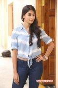Pooja Hegde Heroine Dec 2014 Album 695