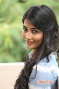 Pooja Hegde Tamil Movie Actress 2014 Galleries 8840