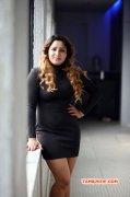 Recent Wallpaper Movie Actress Poonam Adhikari 8411