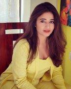 Latest Pic Poonam Bajwa Actress 4792