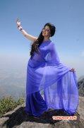 2015 Gallery Movie Actress Poonam Kaur 4916