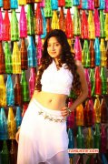 Galleries Actress Poonam Kaur 703