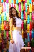 Heroine Poonam Kaur 2015 Images 1734