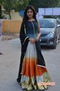 Indian Actress Poonam Kaur Recent Pics 3259
