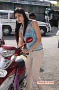 Recent Album Poonam Kaur Tamil Heroine 6881