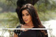 Actress Poorna New Stills 14