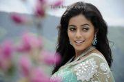 South Indian Actress Poorna